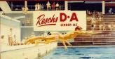 Resch's pub poster of swimming carnival